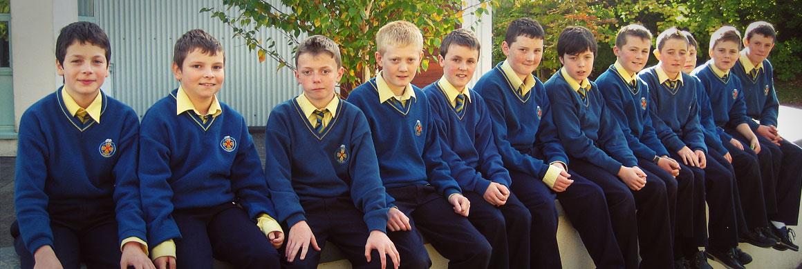 Частные школы в Ирландии