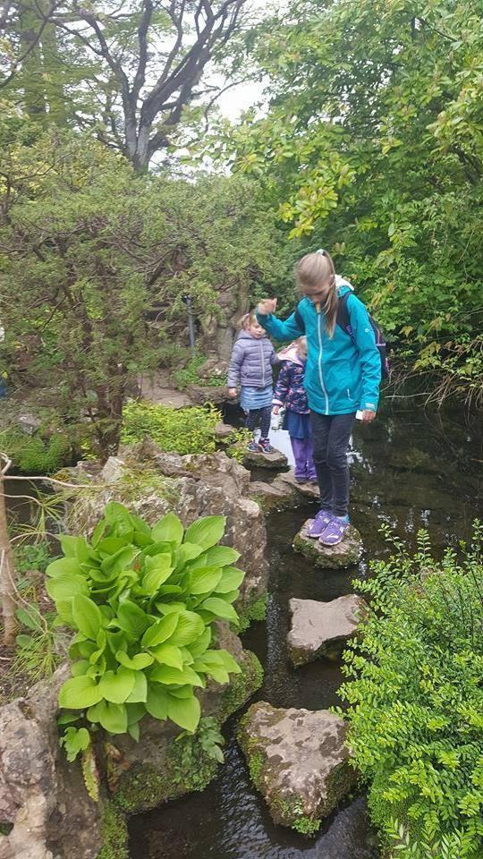 Компания Maximum-Ireland поможет вашему ребенку провести незабываемые каникулы на Изумрудном острове — в Ирландии.